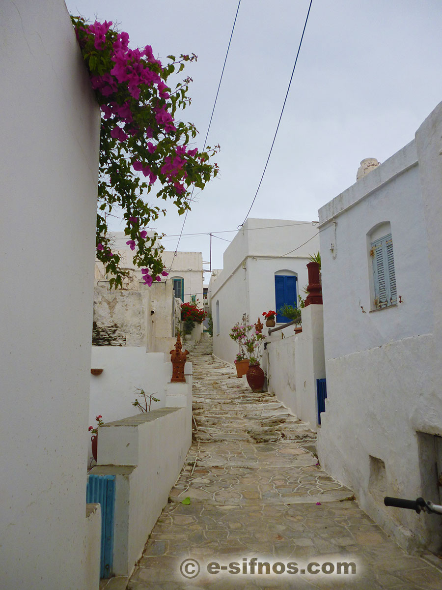 Paved alley in Artemonas