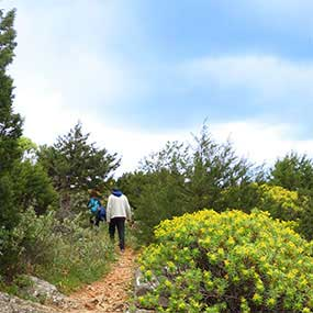 Trails of Sifnos